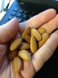 handfull of blue diamond whole natural almonds